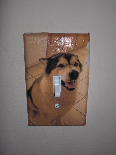Thor Light Switch