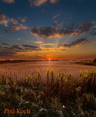 Frosted Sunrise (Phil~Koch) Tags: sunset usa wisconsin sunrise canon landscape phil scenic 7d vista koch horizons photocontesttnc11