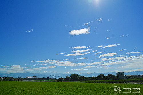 Samsung_NX10_1855mm_20