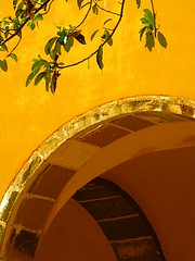 yellow arch (msdonnalee) Tags: muro yellow wall mxico architecture mexico pared gold arch mexique mura mur parede mauer messico   lasmonjas bellesartes i   formerconvent mexicanwall photosfromsanmigueldeallende fotosdesanmigueldeallende elnigromante