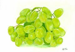 Green Grapes (AngelaMarie292) Tags: original stilllife green art fruit painting artist pastel grape realism realistic softpastel angelamarie292