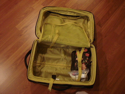 О багаже и сборах в командировку DSC04159