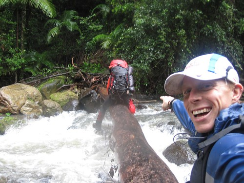 An Epic Pursuit in Lamington NP...