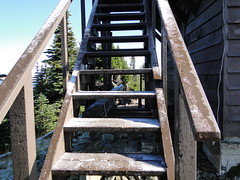 Tolmie lookout with ice on the stairs.
