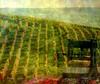 ✿ Allegory  ✿ Jura Vineyards  ✿ (✿ nicolas_gent ✿) Tags: vineyards jura press vignoble arbois pressoir mywinners colorphotoaward flickrdiamond theunforgettablepictures nikoncoolpixp90 magicunicornverybest magicunicornmasterpiece