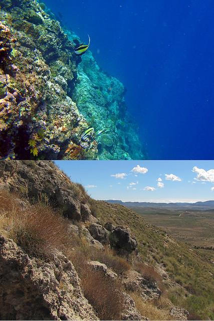 Comparación de un arrecife actual (Bali, Indonesia) y un arrecife fósil (Almería, España) - 01 por Banco de Imágenes Geológicas