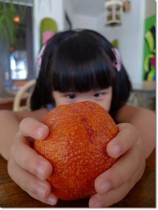Cute Kid holding a Blood Orange
