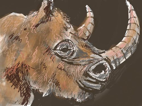 Woolly Rhino Portrait