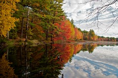 Why I Love Autumn in New England (StarrGazr) Tags: autumn pond newengland newhampshire conservation nh explore hudson 2010 musquash october18 highestposition30onmonday