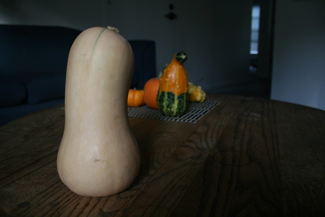 my butternut squash and our growing gourd collection