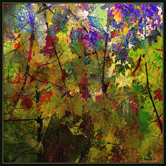 Canadian Tradition: Automatiste Reinstated (Tim Noonan) Tags: digital manipulation layers photoshop expression abstract energy colour autumn materiality texture nature leaves contemporary photo art palette composition surface culturalrevolution avantegarde automatiste selectbestexcellence sbfmasterpiece awardtree shockofthenew sotn vividimagination maxfudgeexcellence maxfudge exoticimage artdigital hypothetical maxfudgeawardandexcellencegroup tistheseason mosca ultramodern