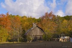 Bufka Farm on M-22 (Jim Sorbie) Tags: bear sleeping fall colors michigan dunes national lakeshore leelanau