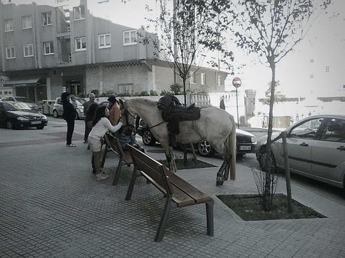 Un caballo en la ciudad