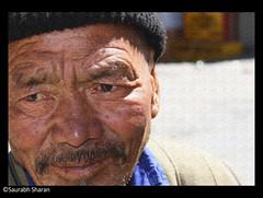 have seen enough Sun , Wrinkles are the proof (saish746) Tags: china old portrait india man cold tibet kashmir himalaya leh manali himalayan ladakh jammu ladakhi