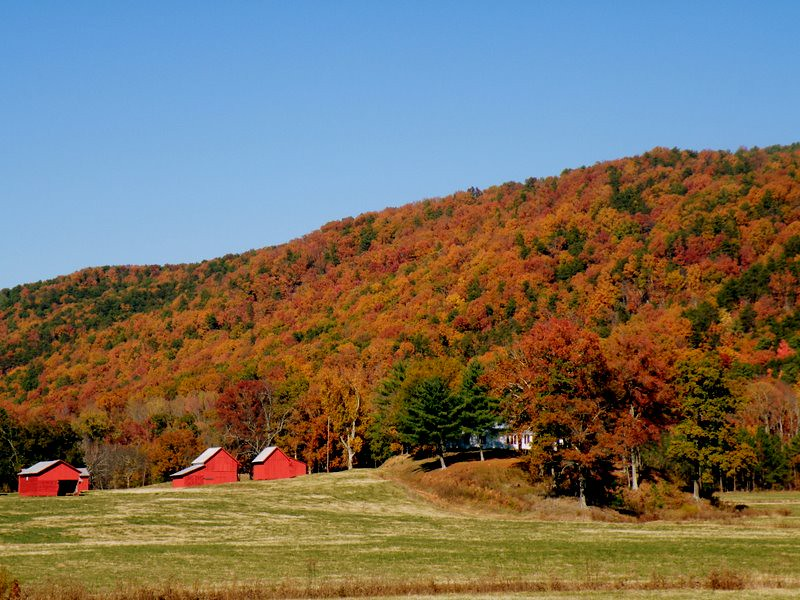 A FARM IN THE APPALACHIAN FOOTHILLS