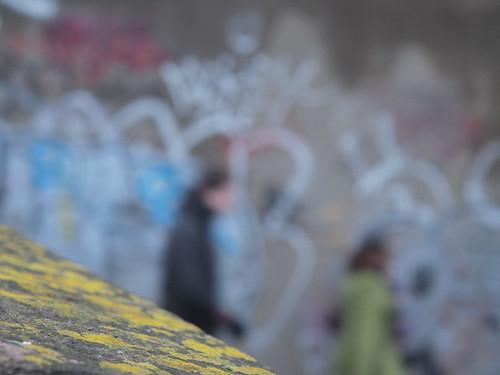 lichen and graffiti_