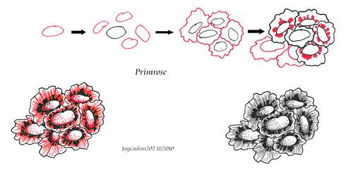 Primrose steps