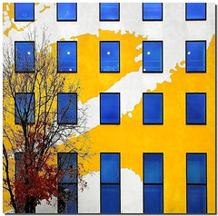 Berliner fassade (1) (Nespyxel) Tags: blue autumn windows red tree berlin colors yellow facade germany deutschland design autunno colori germania stefano fassade finestre berlino facciata nespyxel stefanoscarselli