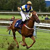 Born to Win (Popeyee) Tags: pictures horse sports sport race canon photo flickr gallery foto photographer image photos pics picture images racing explore fotos winner horseracing win bild bilder journalist flicker 2010 horserace 2011 explored popeyee popeyeeflickr