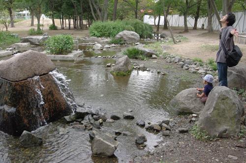 梅小路公園の池