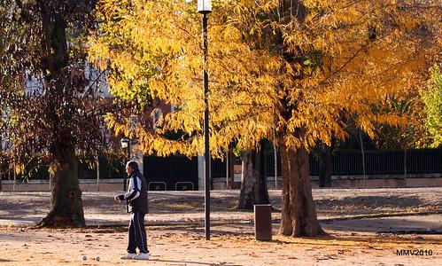 en aranjuez  17-11-2010 17-58-01