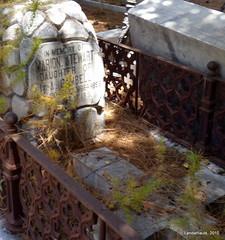 Cementerio Inglés de Málaga (Landahlauts) Tags: england cemeteries english church cemetery andalucía cementerio andalucia ingles andalusia andalusien malaga saintgeorge anglican cimetiere andalousie cimetière andalusie andaluz cemeterie alandalus andaluzia camposanto الأندلس stgeorgeschurch protestante cementeri cementerioingles cementerioprotestante グラナダ mlaga andaluzja andaluzio 安達魯西亞 アンダルシア אנדלוסיה 安達魯西亞自治區 アンダルシア州 منطقةحكمذاتيالأندلس اندلس منطقةالأندلسذاتيةالحكم ანდალუსია 안달루시아지방 แคว้นอันดาลูเซีย андалусия ανδαλουσία андалузија κοιμητήριον 安达卢西亚 أندلوسيا আন্দালুসিয়া exitusletalis andalouzia hiciacetpulviscinisnihil polvocenizanada andalusiya anglicanchaplaincyofsaintgeorge اندلوسيا андалусія андалуси 安達盧西亞 cementerioinglesdemalaga cementerioanglicanosaintgeorge