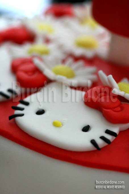 Hello Kitty Kayra 1