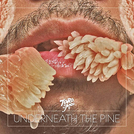 Toro Y Moi 'Underneath the Pine'