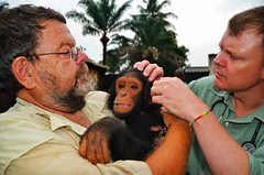 The chimp whisperer
