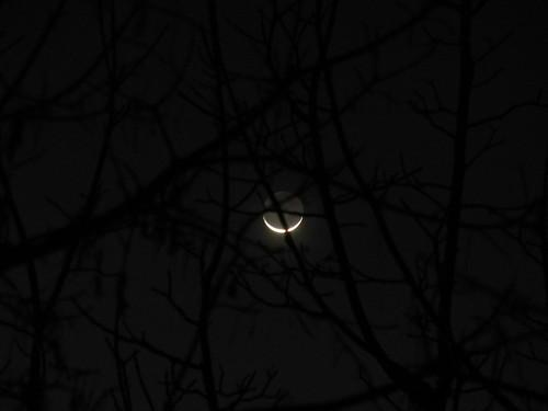 New Moon _ 1529