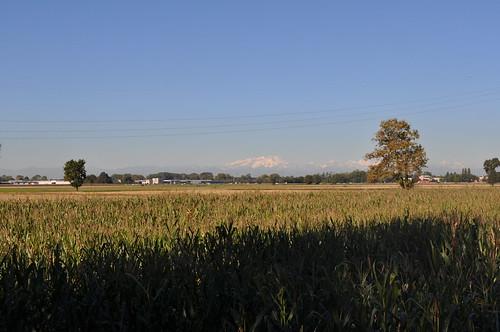 trattori agricoli usati in vendita i