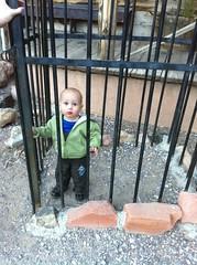 Locked up at Bonnie Springs
