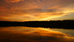 20170702-204238 (gregnboutz) Tags: cloud beautifulclouds cloudiness clouds cloudy cloudylake colorfulclouds lakesunset lakesunsets orangesunset orangesunsets sunset sunsets colorfulsunsets