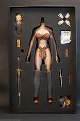Arhian Head Huntress Photo Review (edwicks_toybox) Tags: 16scale tbleague arhian blonde executivereplicas femaleactionfigure phicen sword warrior