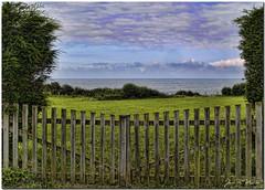 Puertas al campo (Juan R. Martos) Tags: door wood sea sky tree verde green field fence landscape arbol mar puerta madera asturias paisaje cielo campo valla