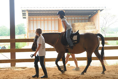 Claire warms up (Montgomery Area Nontraditional Equestrians (MANE)) Tags: al mane pikeroad