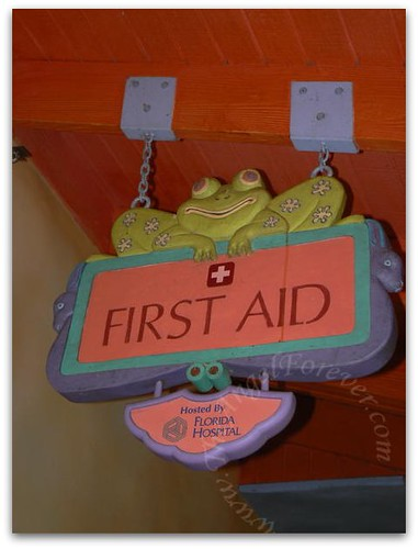 Animal Kingdom First Aid