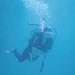 Diving @ GBR