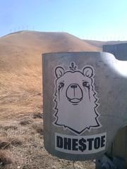 Freeways. (DontHateTheBear H8K) Tags: bear art graffiti sticker bears stickers hills freeway dh bayarea graff dhestoe dhestoer