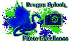 1 2010 Mur Dragon splash