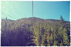 the view up (matt-pearson) Tags: park trees mountain canada vintage lens ride sony national alberta flare banff gondola sulphur alpha a200 fakepolaroid