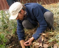 kevin_compost_pile1