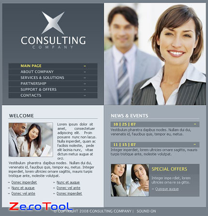 FlashMint 2036 Consulting company flash template