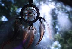 Dreamcatcher Necklace. (-SRW- Photo) Tags: light sky sun tree necklace bokeh rays dreamcatcher