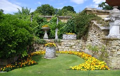 Italian Garden (5) (music4mark) Tags: summer england plant flower leaves garden kent petal queens kings bloom henryviii hevercastle italiangarden anneboleyn