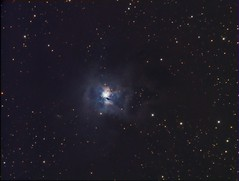 NGC7023 - The Iris Nebula (Astro Gabe) Tags: stars space astronomy sbig ngc7023 pixinsight irisnebula Astrometrydotnet:status=solved atlaseqg at8rc eon80ed st8300 Astrometrydotnet:version=14400 Astrometrydotnet:id=alpha20100983742209 starfishfishcamp sbigst8300m