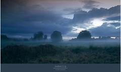 NEBELIG (D.Reichardt) Tags: longexposure trees nature fog clouds germany landscape evening europe moorland norddeutschland lowersaxony stubben bokel filtercokin