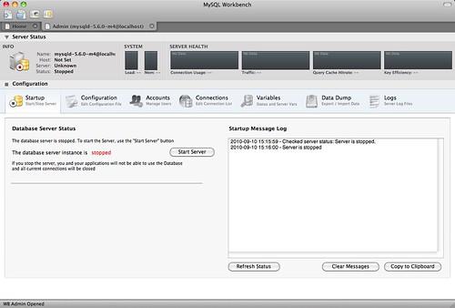 Server Instance Window