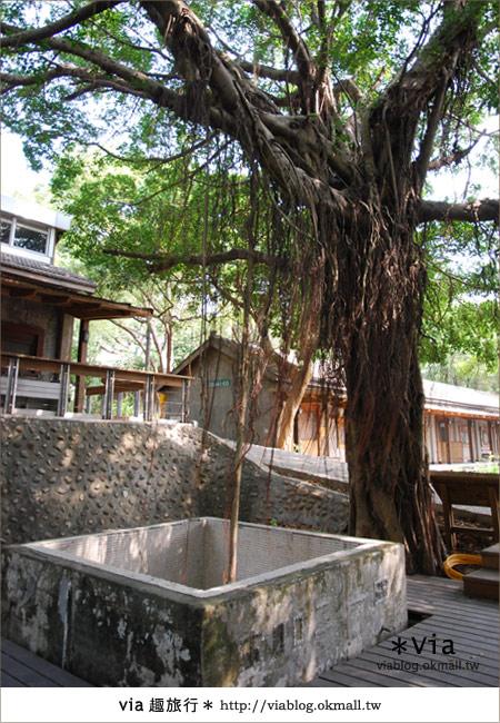 【彰化】彰化藝術高中~教室與森林結合的美麗校區12