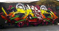 Zade (COLOR IMPOSIBLE CREW) Tags: chile graffiti asie 2010 zade quilpue fros